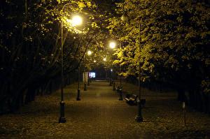 Обои Беларусь Парки Осенние Деревья Ночные Уличные фонари Скамья Листва Minsk