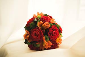 Картинки Букеты Розы Альстрёмерия Цветы