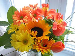 Обои Букеты Подсолнухи Альстрёмерия Хризантемы Тюльпаны Цветы