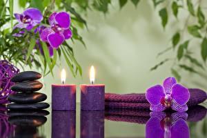 Фотография Свечи Камень Орхидеи Физиотерапия Цветы