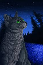 Обои Коты Рисованные Ночные