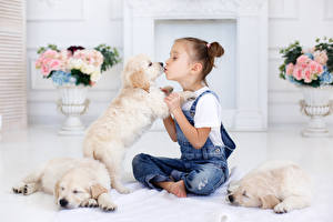 Фотографии Собаки Девочки Джинсы Щенок Ребёнок Животные