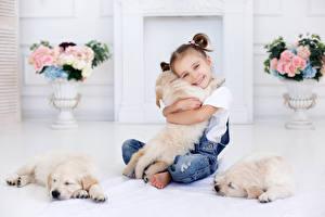 Обои Собаки Девочки Улыбка Щенок Ретривер Ребёнок