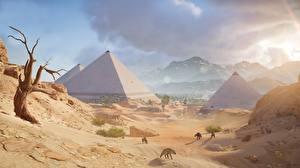 Фотография Египет Пустыня Assassin's Creed Origins Пирамида Игры