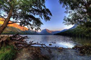 Фотография Англия Озеро Берег Пне Lake Buttermere Cumbria