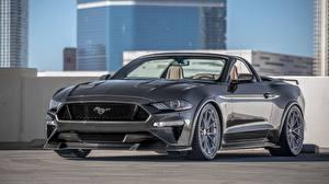 Картинка Ford Серый Кабриолет Speedkore Mustang GT Convertible Авто