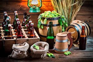 Картинки Хмель Пиво Бочка Бутылка Колосья Еда