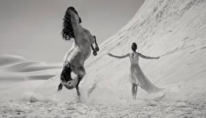 Фотография Лошади Платье Черно белое Животные Девушки