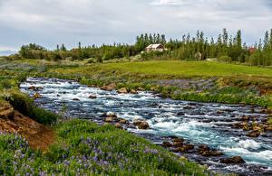 Картинки Исландия Камни Луга Ручей