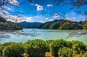 Фотография Япония Озеро Горы Кусты Ветвь Lake Shorenji Nabari Природа