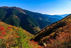 Фотография Япония Парки Горы Осень Nara Park Природа