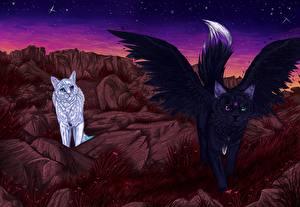 Фотография Волшебные животные Коты Крылья