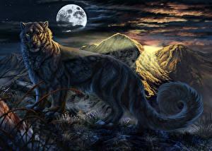 Фото Волшебные животные Леопарды Ночные Луна Хвост Фантастика