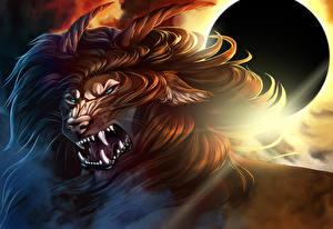 Фото Волшебные животные Злость Рога