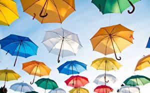 Обои Много Зонт