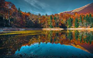 Фотографии Черногория Озеро Леса Осень Отражается Lake Biograd Природа