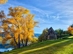 Обои Новая Зеландия Дома Осенние HDRI Деревья Трава Queenstown