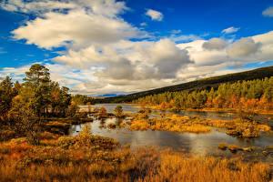 Обои Норвегия Осенние Небо Озеро Леса Облака Природа