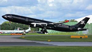 Фотография Самолеты Пассажирские Самолеты Черный Полет Взлет Сбоку Airbus A340-313 Авиация