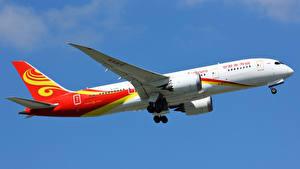 Фотография Самолеты Пассажирские Самолеты Боинг Летящий Сбоку 787-8 Авиация