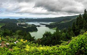Картинки Португалия Озеро Леса Холмы Sao Miguel Azores Природа