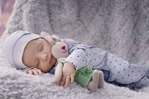 Картинки Кролики Игрушки Грудной ребёнок Спящий