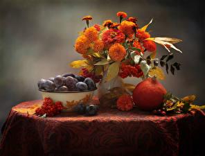 Фото Натюрморт Букеты Бархатцы Тыква Сливы Рябина Цветы Еда