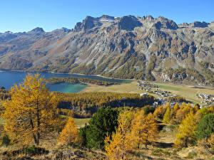 Фотографии Швейцария Горы Озеро Берег Осень Kanton Graubuenden
