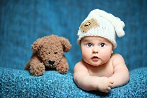 Обои Плюшевый мишка Младенцы Взгляд Шляпа