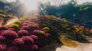 Фотография Ведьмак 3: Дикая Охота 3D_Графика Природа