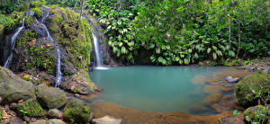 Картинки Тропики Водопады Камни Мох Guadeloupe Basse-Terre