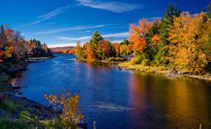 Фотография Штаты Осень Реки Леса Деревья Hamilton New York