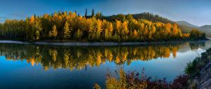 Обои Штаты Парки Осенние Леса Речка Glacier National Park