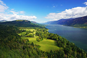 Картинка Штаты Пейзаж Реки Леса Небо Луга Холмы Columbia River Gorge Природа