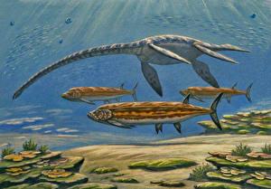 Фотография Подводные Древние животные Динозавры Рисованные Styxosaurus, Xiphactinus audax