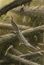 Фотография Подводные Древние животные Динозавры Рисованные Archegosaurus