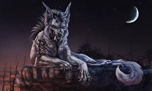 Фотографии Волк оборотень Чудовище Лунный серп Ночные Оскал Фантастика