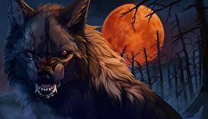 Фотография Волк оборотень Чудовище Луна Злость Фантастика