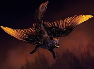 Картинки Волки Волшебные животные Крылья Летящий Фантастика