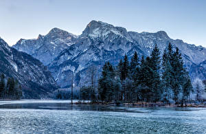 Картинка Австрия Горы Озеро Деревья Almsee Природа