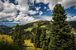Фотографии Австрия Небо Холмы Ель Облака Koenigsleiten