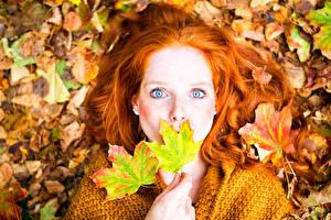 Картинка Осенние Рыжая Листва Лицо Девушки