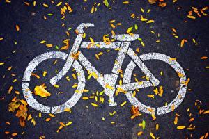 Фотографии Велосипед Асфальт