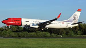 Обои Боинг Самолеты Пассажирские Самолеты Летит Взлетает 737-8JP Авиация