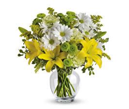 Картинка Букет Лилии Хризантемы Белым фоном Вазы цветок