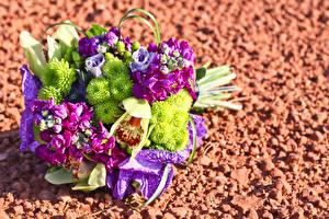Фотографии Букет Орхидея Хризантемы цветок