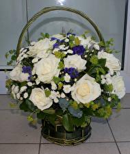 Картинки Букеты Розы Корзина Цветы