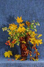 Обои Букет Рябина Ваза На ветке Листья цветок