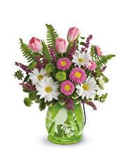 Картинки Букет Тюльпан Маргаритка Ромашка Белом фоне Ваза Цветы