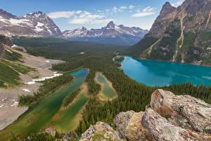 Картинки Канада Парки Горы Озеро Леса Камни Пейзаж Yoho National Park Природа